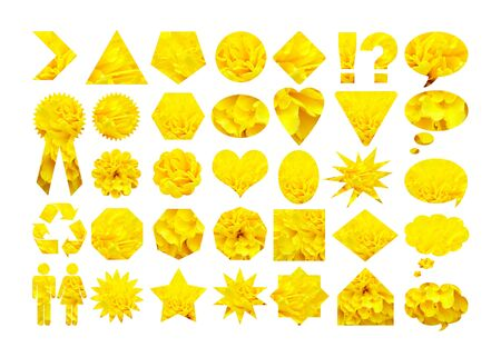 Yellow flower petals graphic shapes photo