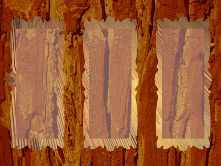 Rustic natural wood background with rectangular transparent frames for pics photo