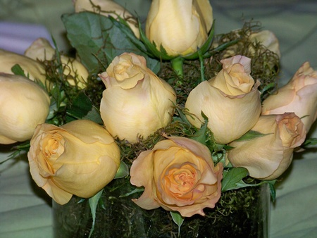 Delicated light pale orange roses wedding bouquet photo