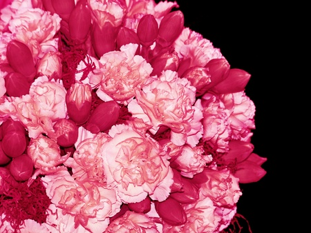 magentas: Valentines pink bunch of flowers on an spheric isolated bouquet