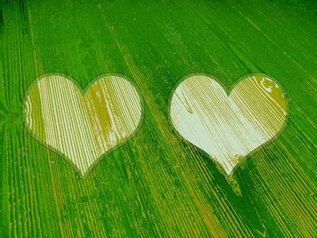 Ecologic love, couple of wood hearts background Stock Photo - 12427333