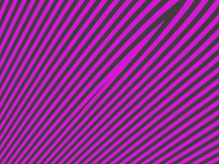 Shocking pink and dark grey female zebra simple background photo