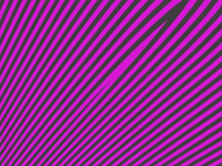 Shocking pink and dark grey female zebra simple background