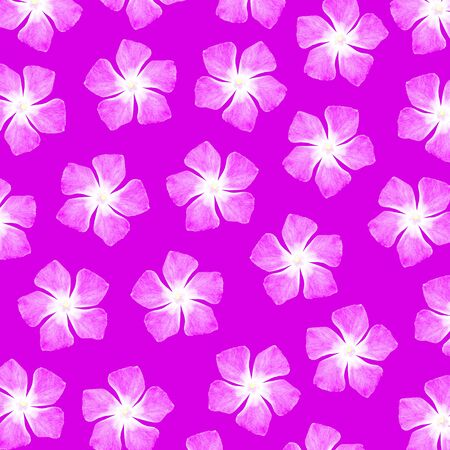 magentas: Pink background with flowers of five petals pattern