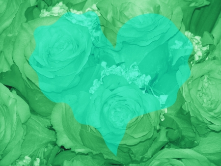 romaticism: Background of green heart over coloured roses Stock Photo