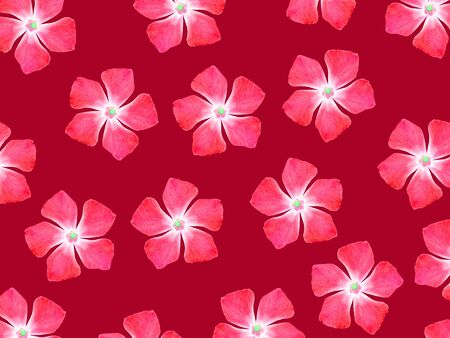 magentas: Red flowers pattern