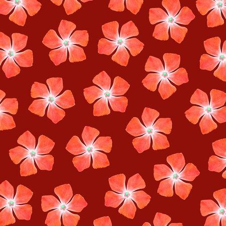 redish: Orange flowers pattern over redish background