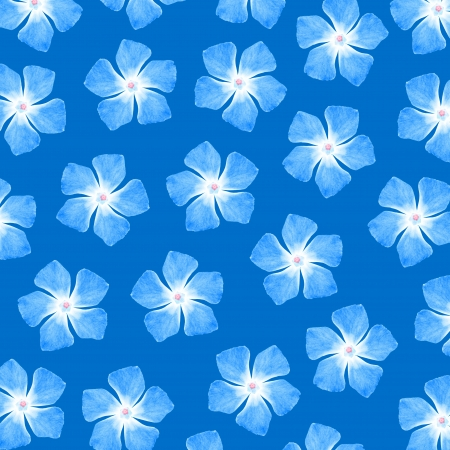 cian: Blue square background with white flowers