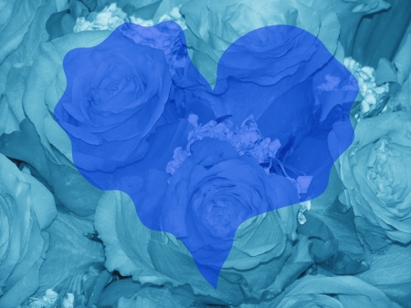 romaticism: Blue romantic heart over roses for valentines day