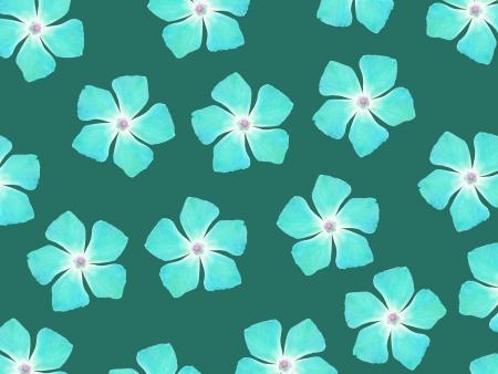greenish: Aqua blue flowers pattern over greenish blue backdrop Stock Photo