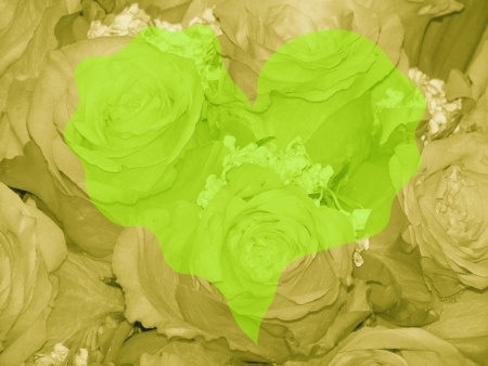 quivering: Light green heart over greenish sepia roses background Stock Photo