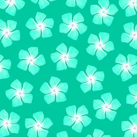 Turquoise flowers of five petals pattern Stock Photo - 17116071