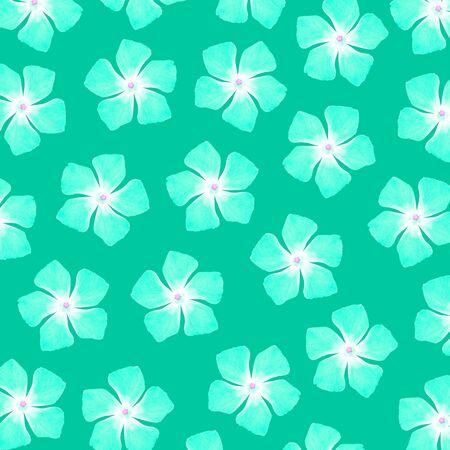 five petals: Turquoise flowers of five petals pattern Stock Photo