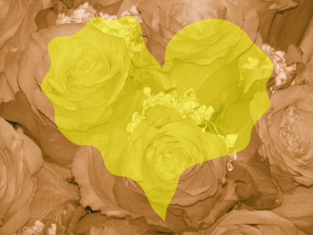 romaticism: Yellow heart over sepia roses background for romantic valentines Stock Photo
