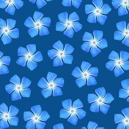 cian: Cian flowers pattern over blue