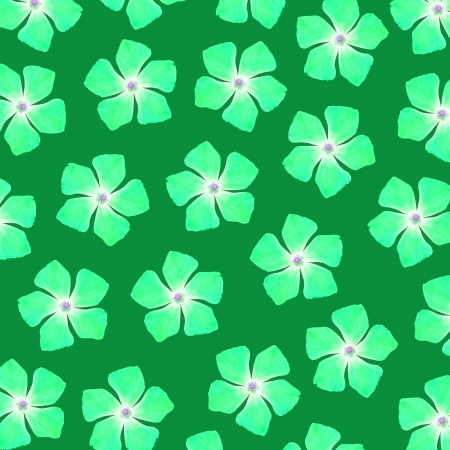 Brilliant green flowers over dark green background Stock Photo - 17225605
