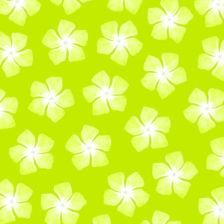 Light green flowery background Stock Photo - 17225966
