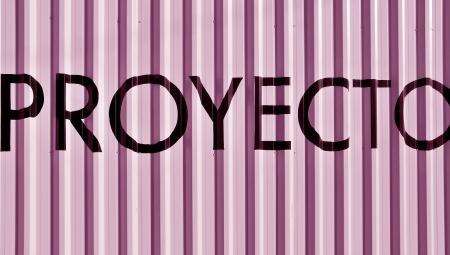 typographies: Proyecto, proyect over pink metallic background with vertical lines