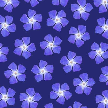 five petals: Blue flowers pattern