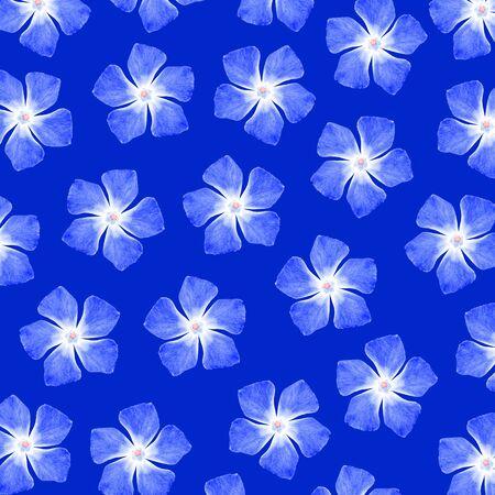 five petals: Blue pattern of flowers of five petals