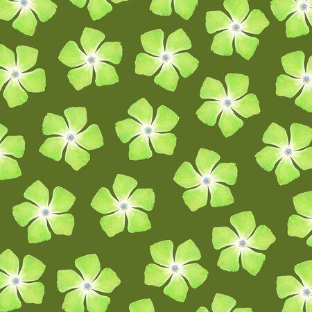 Light green flowers over sober dark green background Stock Photo - 17226912