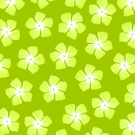 Light green flowery background Stock Photo - 17226910
