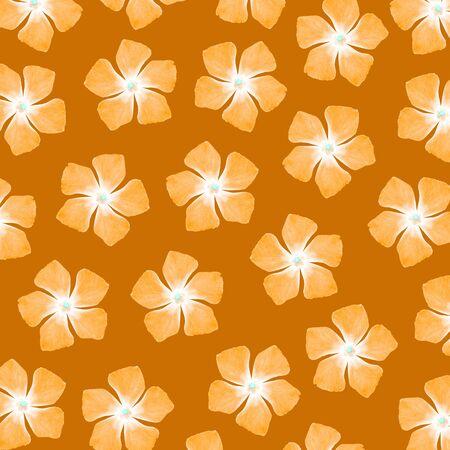 five petals: Orange flowers of five petals over brown background Stock Photo