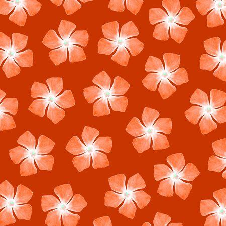 brownish: Orange flowers pattern over brown background