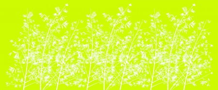 acid colors: Acid lemon green background with bamboo forest in white Stock Photo