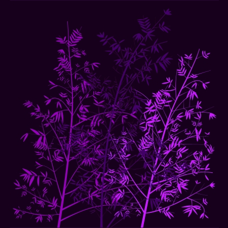Purple And Violet Bamboo Trees Illustration In Dar Night