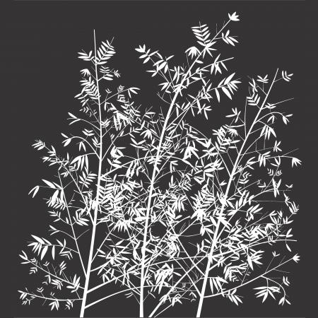 bn: Gris oscuro con blanco de bamb� �rboles siluetas