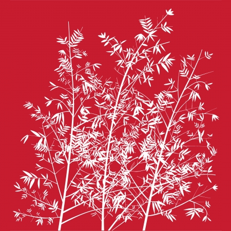 Elegant light thin bamboo trees on red background photo