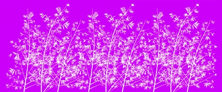 fuchsia color: Pink purple background with light bamboo trees forest