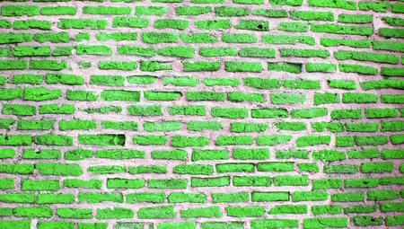 brickwall: Light green brickwall texture background photo Stock Photo