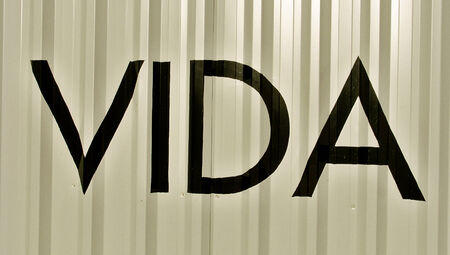 typographies: Vida spanish word meaning life on white metallic background
