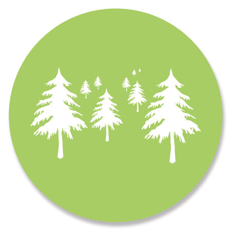 Snowy Pine trees on light green paper circle background on white photo