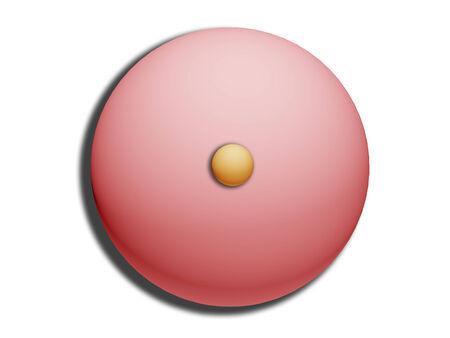 Hazelnut on top of pink circle of sugar bonbon illustration on white Stock Illustration - 28885643