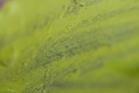 olive green: Olive green blurs paint brushed abstract background