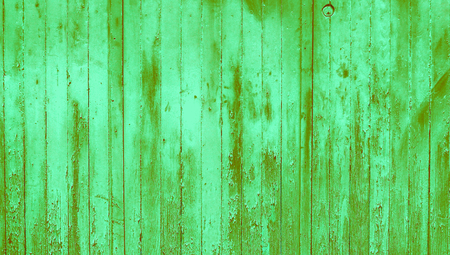 oldish: Green striped wood wall abstract background