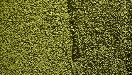 olive green: Olive green abstract background of rustic wall Stock Photo