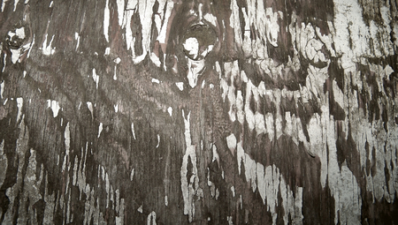 oldish: Wood abstract grungy background with cracks of painting