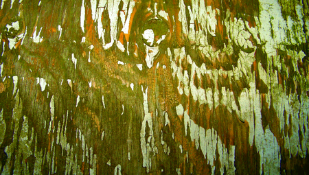 Vintage wood paint grunge abstract background
