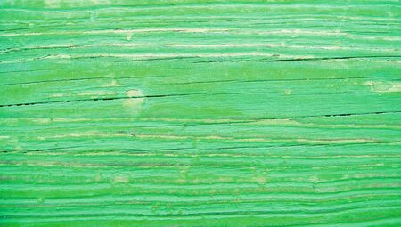 oldish: Green striped texture stock image