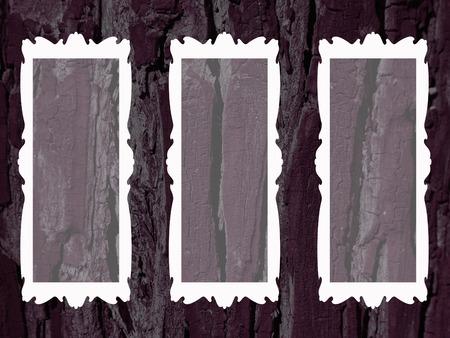 burnt wood: Black burnt wood background with empty white frames elegance