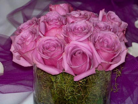 fuchsias: Pink roses elegant party arrangement close up