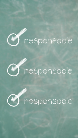 requirements: Responsible unique item of requirements list of spanish class