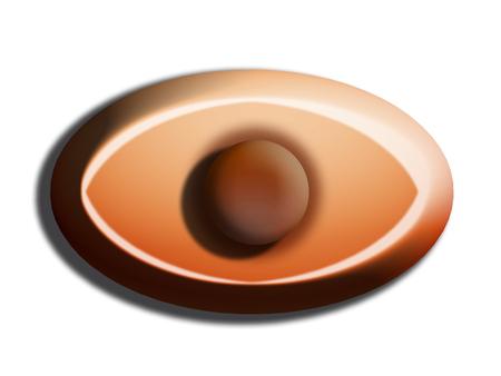 oval shape: Chocolate bombom oval shape isolated on white