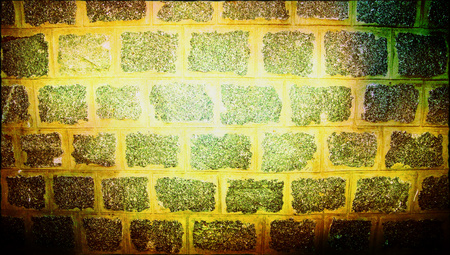 yellowish: Stones wall yellowish background