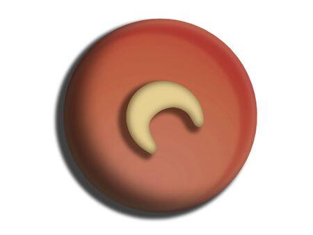 sugarplum: Circular chocolate candy with cashew nut