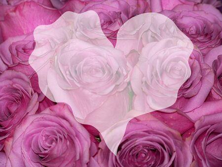 Heart trembling shape on elegant roses flowers background